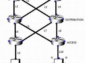 什么是Cisco快速转发(CEF)之CEF极化