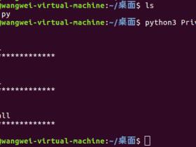 Python私有化