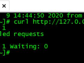 zabbix4.4监控案例之Nginx监控