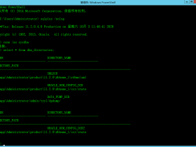 Oracle11G配置expdp/impdp数据泵