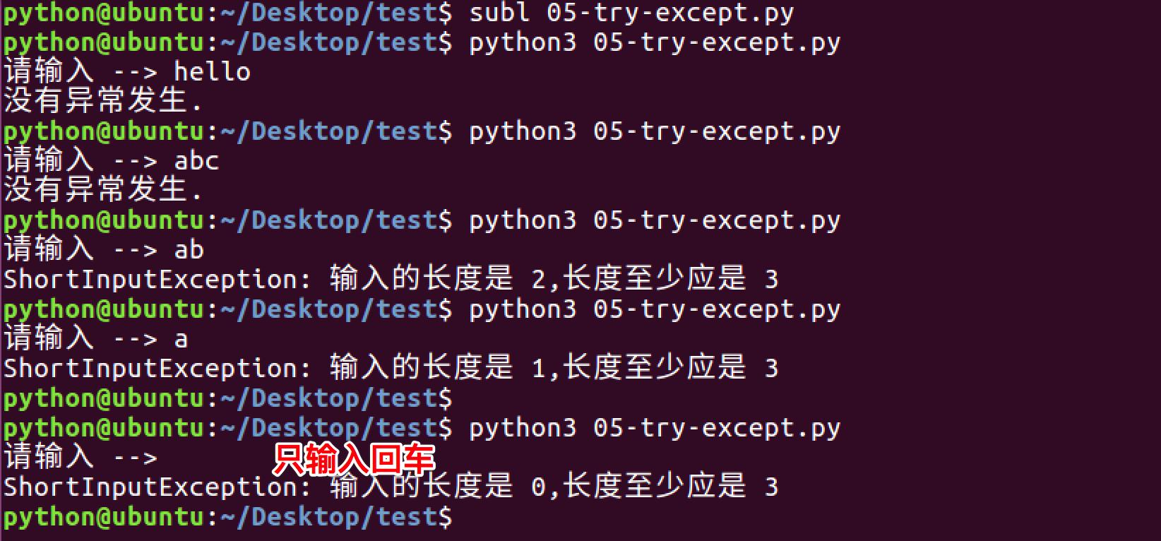 Python抛出自定义的异常